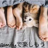 雨の日に退屈しない!家族で見れるAmazonプライム配信の映画4選